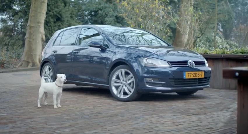 Volkswagen imitat de un caine